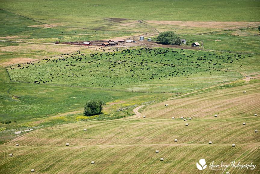 Eagle Valley, Lemhi County, Idaho