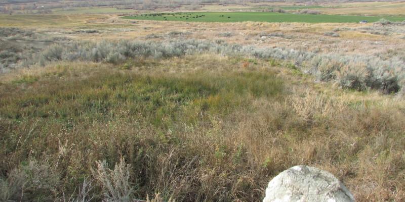 Geertson Creek